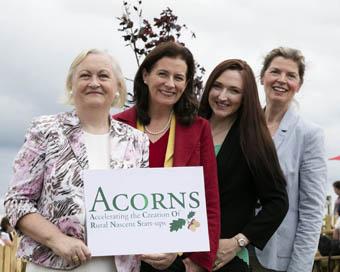 acorn_featured